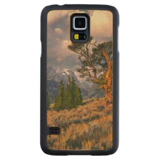 USA, Wyoming, Grand Teton NP. Sunrise greets a Carved Maple Galaxy S5 Case