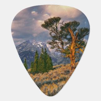 USA, Wyoming, Grand Teton NP. Sunrise greets a Guitar Pick