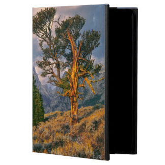 USA, Wyoming, Grand Teton NP. Sunrise greets a iPad Air Cases