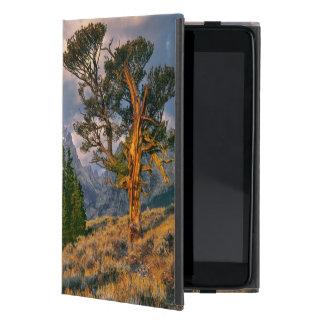 USA, Wyoming, Grand Teton NP. Sunrise greets a iPad Mini Case
