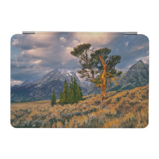 USA, Wyoming, Grand Teton NP. Sunrise greets a iPad Mini Cover