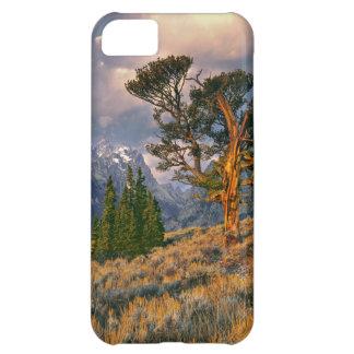 USA, Wyoming, Grand Teton NP. Sunrise greets a iPhone 5C Case