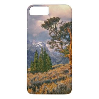 USA, Wyoming, Grand Teton NP. Sunrise greets a iPhone 8 Plus/7 Plus Case