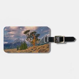 USA, Wyoming, Grand Teton NP. Sunrise greets a Luggage Tag