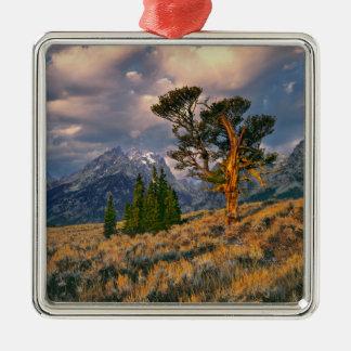 USA, Wyoming, Grand Teton NP. Sunrise greets a Silver-Colored Square Decoration