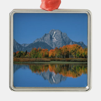 USA, Wyoming, Grand Tetons National Park in 4 Silver-Colored Square Decoration