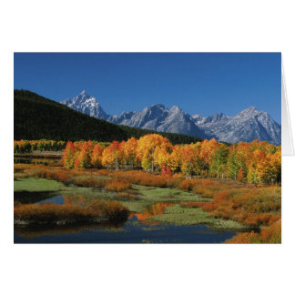 USA, Wyoming, Grand Tetons National Park in Card