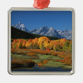 USA, Wyoming, Grand Tetons National Park in Silver-Colored Square Decoration