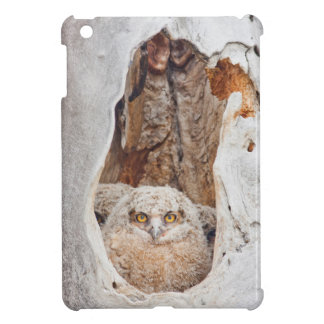 USA, Wyoming, Lincoln County, Great Horned iPad Mini Cases