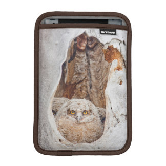 USA, Wyoming, Lincoln County, Great Horned iPad Mini Sleeve