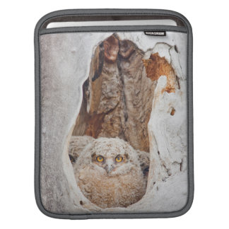 USA, Wyoming, Lincoln County, Great Horned iPad Sleeve