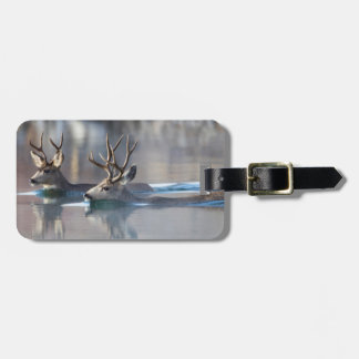 USA, Wyoming, Mule Deer bucks swimming lake Luggage Tag