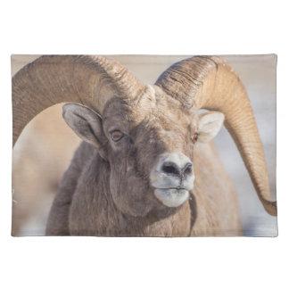 USA, Wyoming, National Elk Refuge, Bighorn Sheep Placemat