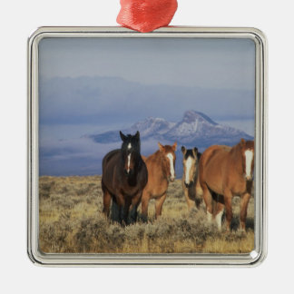USA, Wyoming, near Cody Group of horses, Heart Christmas Ornament