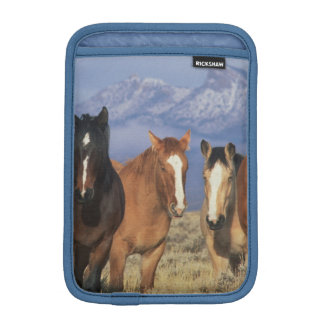 USA, Wyoming, near Cody Group of horses, Heart iPad Mini Sleeves