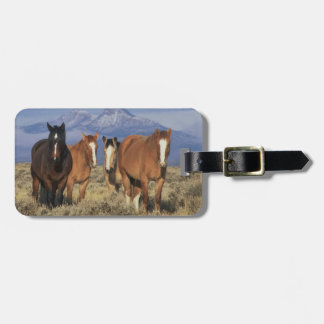 USA, Wyoming, near Cody Group of horses, Heart Luggage Tag