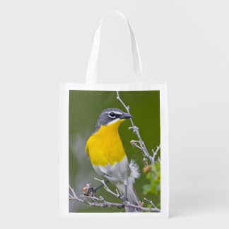 USA, Wyoming, Yellow-breasted Chat Icteria 2 Reusable Grocery Bag