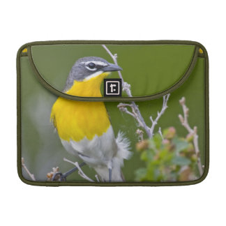 USA, Wyoming, Yellow-breasted Chat Icteria 2 Sleeve For MacBooks