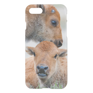 USA, Wyoming, Yellowstone National Park, A bison iPhone 8/7 Case