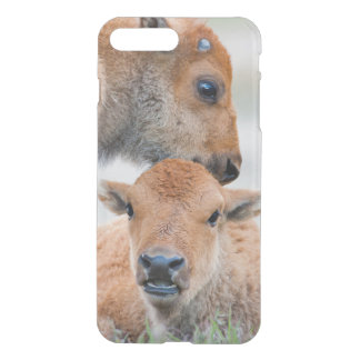 USA, Wyoming, Yellowstone National Park, A bison iPhone 8 Plus/7 Plus Case