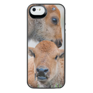 USA, Wyoming, Yellowstone National Park, A bison iPhone SE/5/5s Battery Case