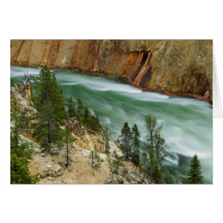 USA, Wyoming, Yellowstone National Park Card