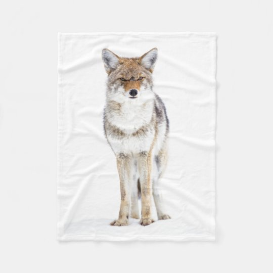 USA, Wyoming, Yellowstone National Park, Coyote 3 Fleece Blanket