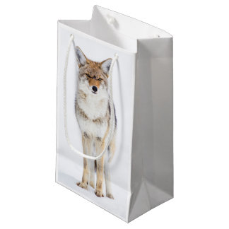 USA, Wyoming, Yellowstone National Park, Coyote 3 Small Gift Bag