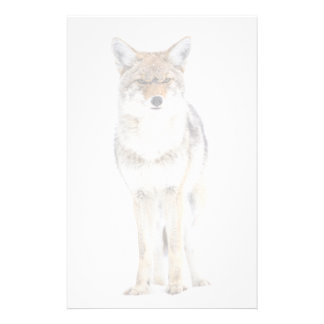 USA, Wyoming, Yellowstone National Park, Coyote 3 Stationery
