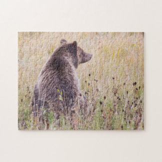 USA, Wyoming, Yellowstone National Park, Grizzly 2 Jigsaw Puzzle