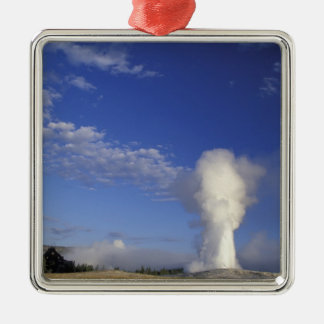 USA, Wyoming. Yellowstone National Park. Old Christmas Ornament