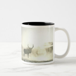 USA, Wyoming, Yellowstone National Park. Sunrise Two-Tone Coffee Mug