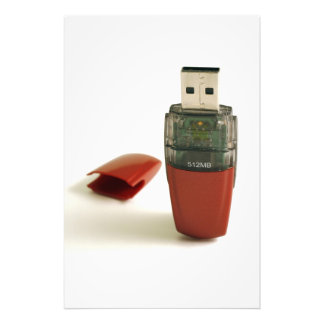 USB Flash pen Photographic Print