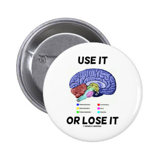 Use It Or Lose It (Brain Anatomy Humor Saying) 6 Cm Round Badge