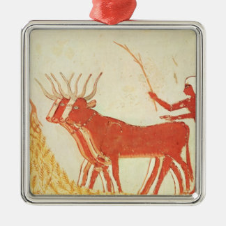 Using cows to trample wheat Silver-Colored square decoration