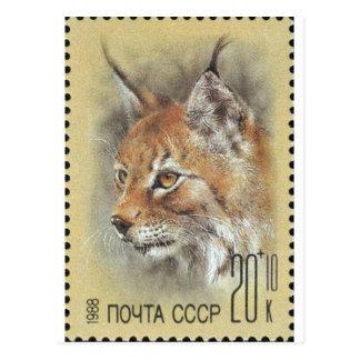 USSR ~ Stamp Lynx Postcard