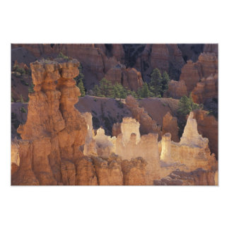 Utah, Bryce Canyon National Park. Hoodoos, Photo Print