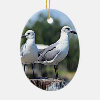 Utah California Gull Ceramic Oval Decoration