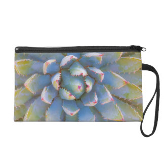 Utah, Dixie National Forest. Close-up of yucca Wristlet Purses