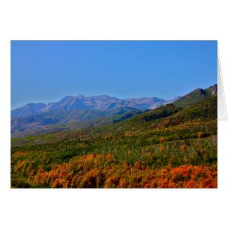 Utah Fall Foliage Greeting Cards