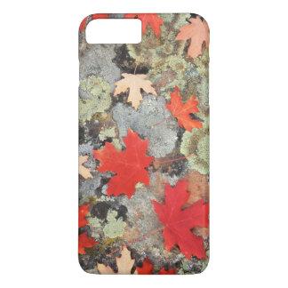 Utah, Fishlake National Forest. Patterns iPhone 8 Plus/7 Plus Case