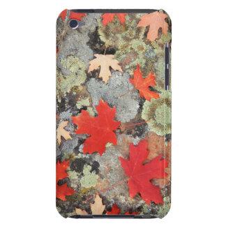 Utah, Fishlake National Forest. Patterns iPod Case-Mate Case