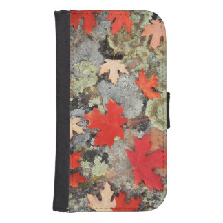 Utah, Fishlake National Forest. Patterns Samsung S4 Wallet Case
