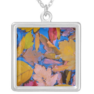 Utah, Glen Canyon National Recreation Area 2 Silver Plated Necklace