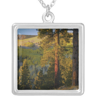 UTAH. Ponderosa pines & aspen, autumn. Sunrise, Silver Plated Necklace