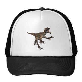 Utah Raptor Cap