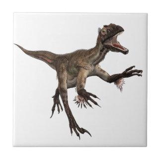 Utah Raptor Small Square Tile