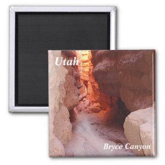 utah refrigerator magnet bryce canyon