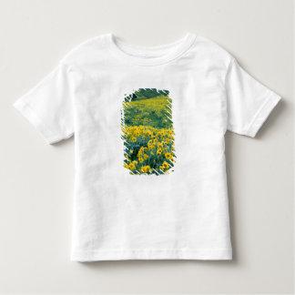 UTAH. USA. Arrowleaf balsamroot Balsamorhiza Toddler T-Shirt