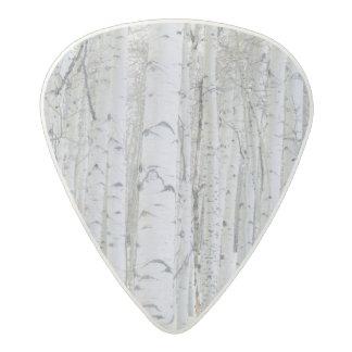 UTAH. USA. Aspen (Populus tremuloides) & Douglas Acetal Guitar Pick